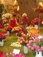Annual Rose Festival at Doue la Fontaine